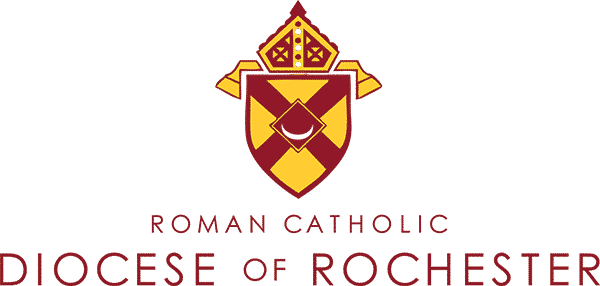diocese-rochester-hmis-removebg-preview